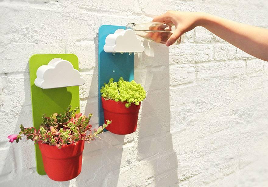 أوعية نباتات منزلية