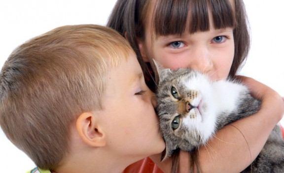 أمراض تنقلها الحيوانات الأليفة للإنسان احذروا منها